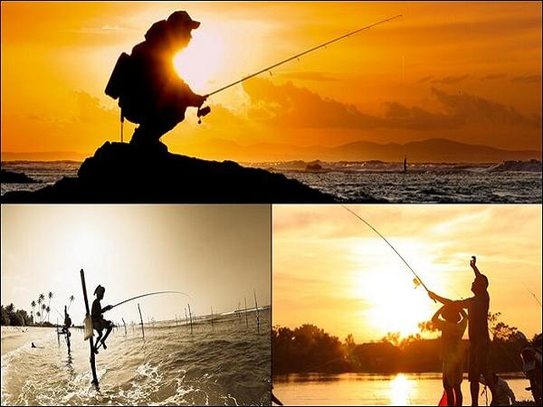 Giải mộng giấc mơ đi câu cá là điềm báo gì?