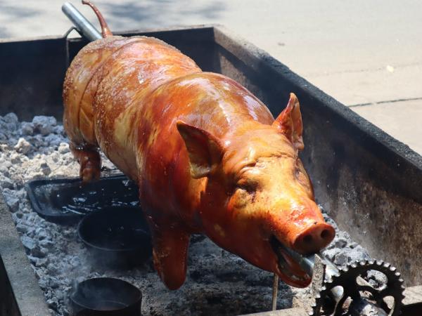 Nằm mơ thấy lợn quay nên chơi xổ số con gì may mắn